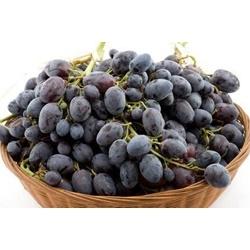 Nho đen không hạt  | Các loại rau, quả, củ