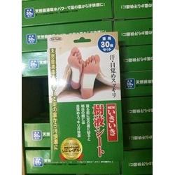 Miếng dán chân khử độc tố Kenko Nhật Bản                                 | Các loại khác