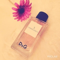 Nước hoa nữ tester D&G ANTHOLOGY 3 L'IMPERATRICE EDT 100ml